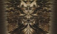 maschera rituale