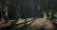 teatro nel bosco